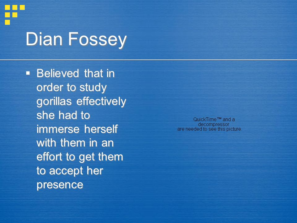 Dian Fossey  Believed that in order to study gorillas effectively she had to immerse herself with them in an effort to get them to accept her presence