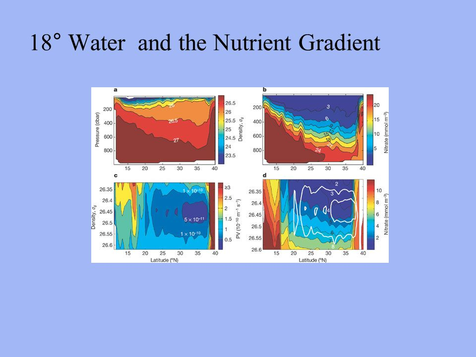 18° Water and the Nutrient Gradient