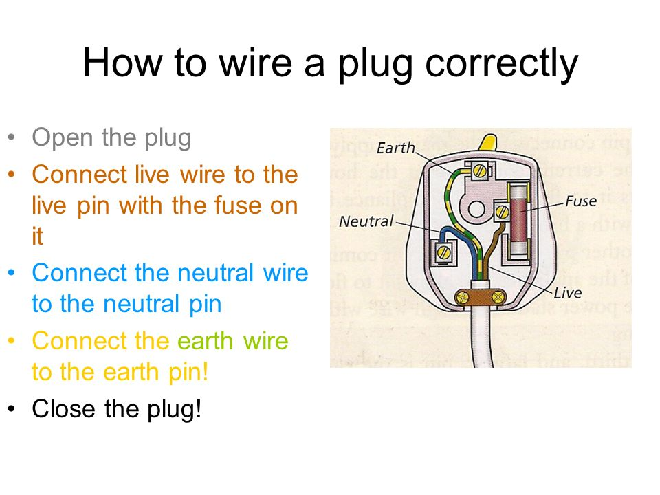 Cool Live And Neutral Wires Photos - Simple Wiring Diagram Images ...