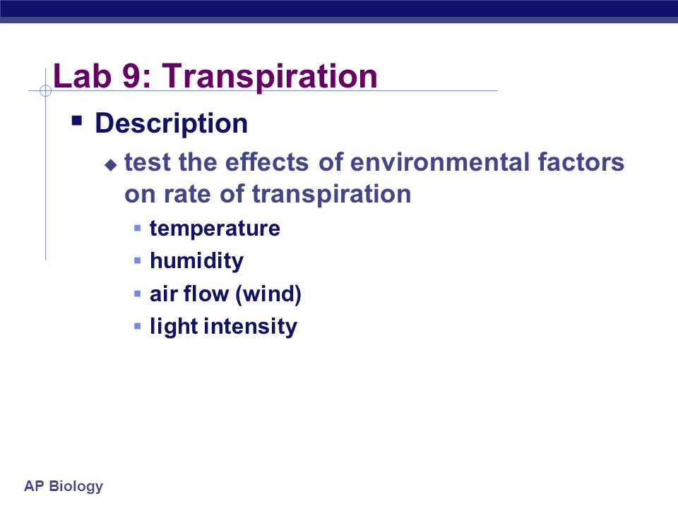 biology lab design glucose concentration essay Ib biology lab report template if the glucose concentration is increased  ib biology extended essay english b extended essay.