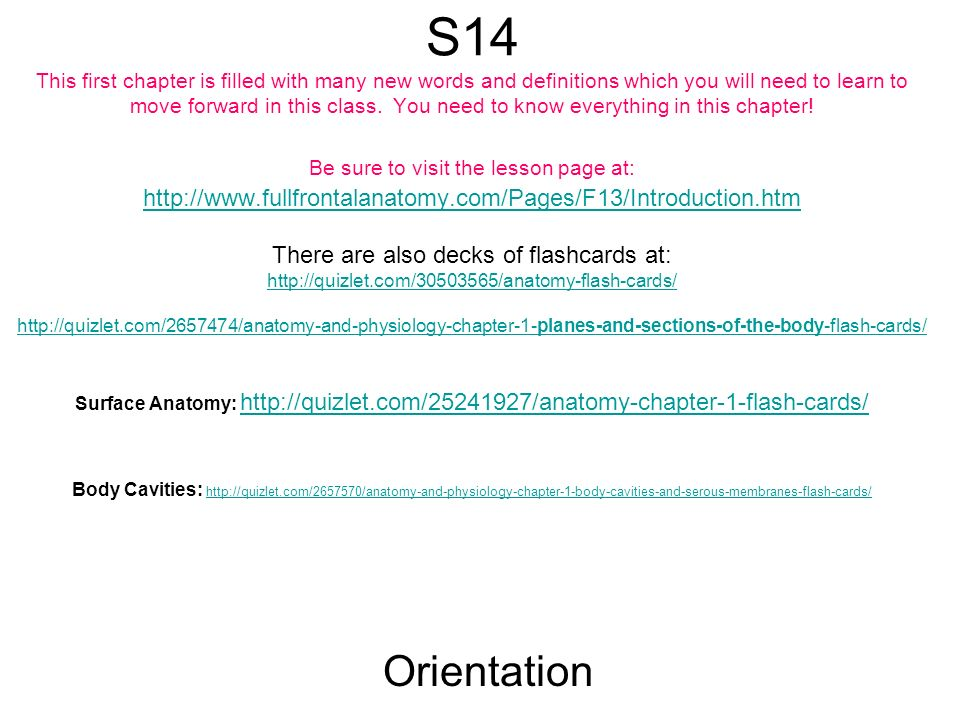 S14 This first chapter is filled with many new words and definitions ...