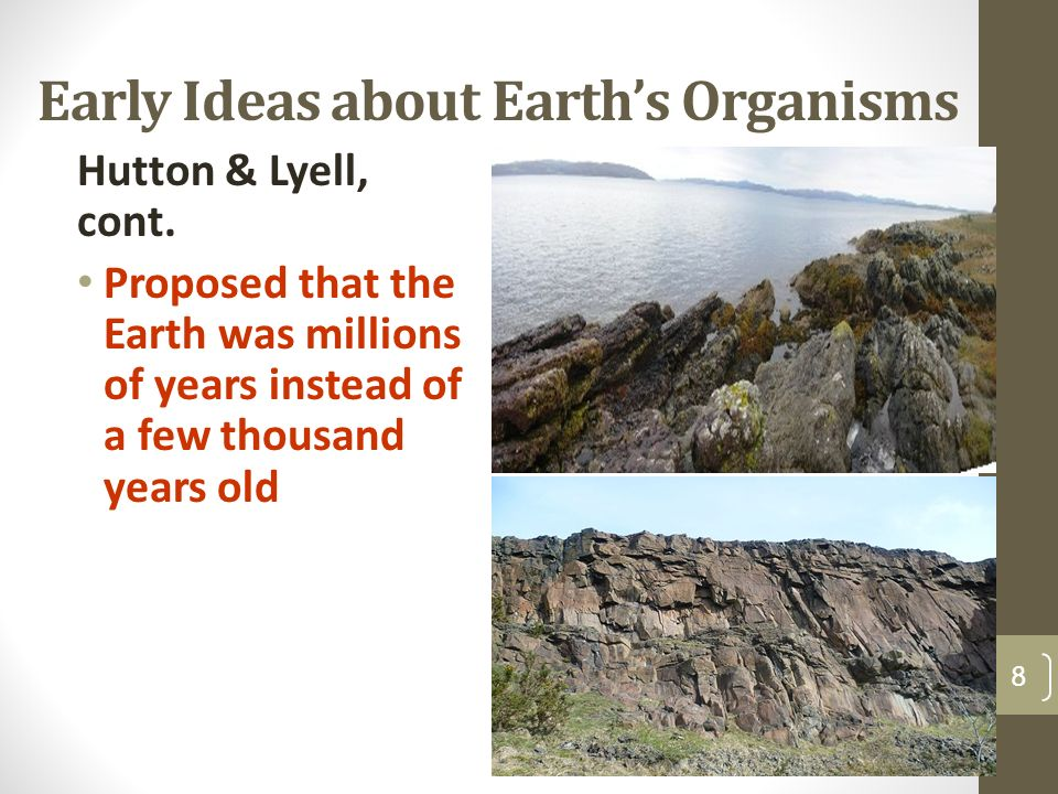 Early Ideas about Earth's Organisms Hutton & Lyell, cont.