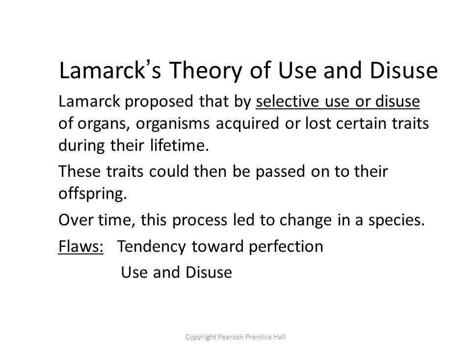 Copyright Pearson Prentice Hall Lamarck's Theory of Use and Disuse Lamarck proposed that by selective use or disuse of organs, organisms acquired or lost certain traits during their lifetime.