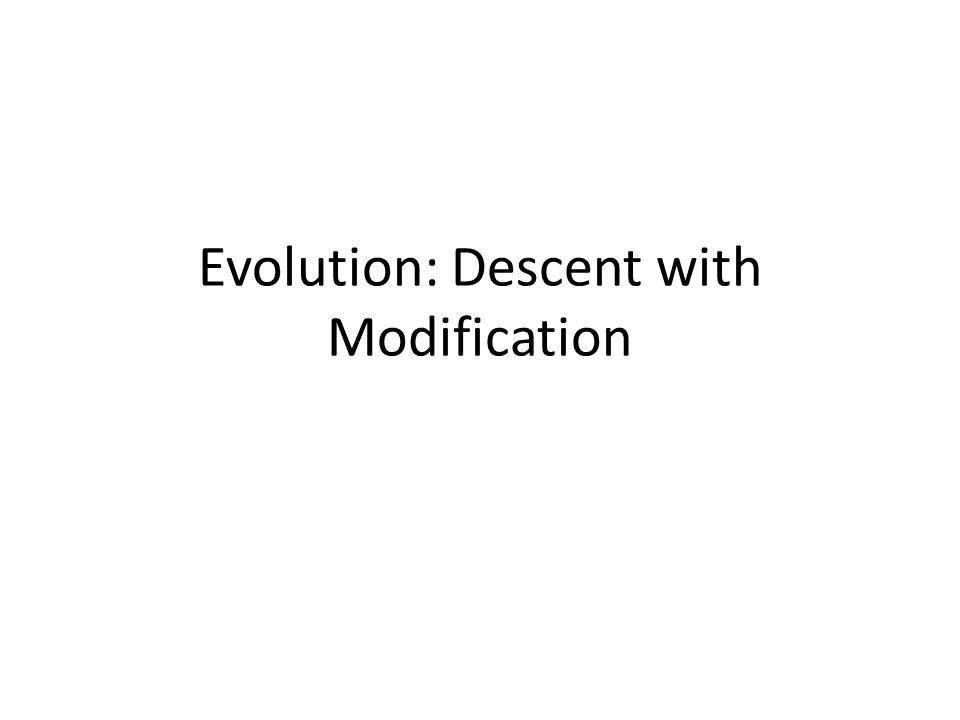 Evolution: Descent with Modification