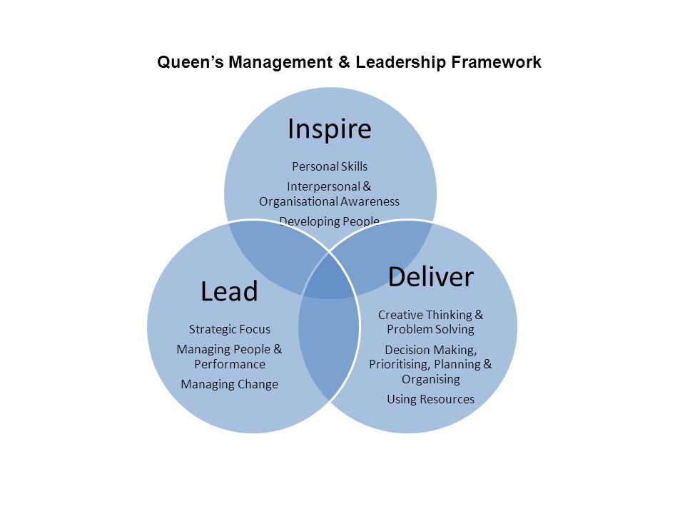 Inspire Personal Skills Interpersonal & Organisational Awareness Developing People Deliver Creative Thinking & Problem Solving Decision Making, Prioritising, Planning & Organising Using Resources Lead Strategic Focus Managing People & Performance Managing Change Queen's Management & Leadership Framework