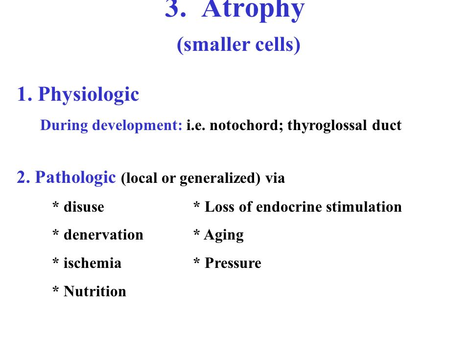 3. Atrophy (smaller cells) 1. Physiologic During development: i.e.