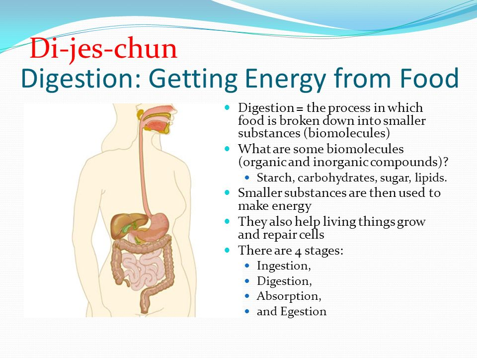 Nutrition Nutrition = the process of using food for growth, repair ...