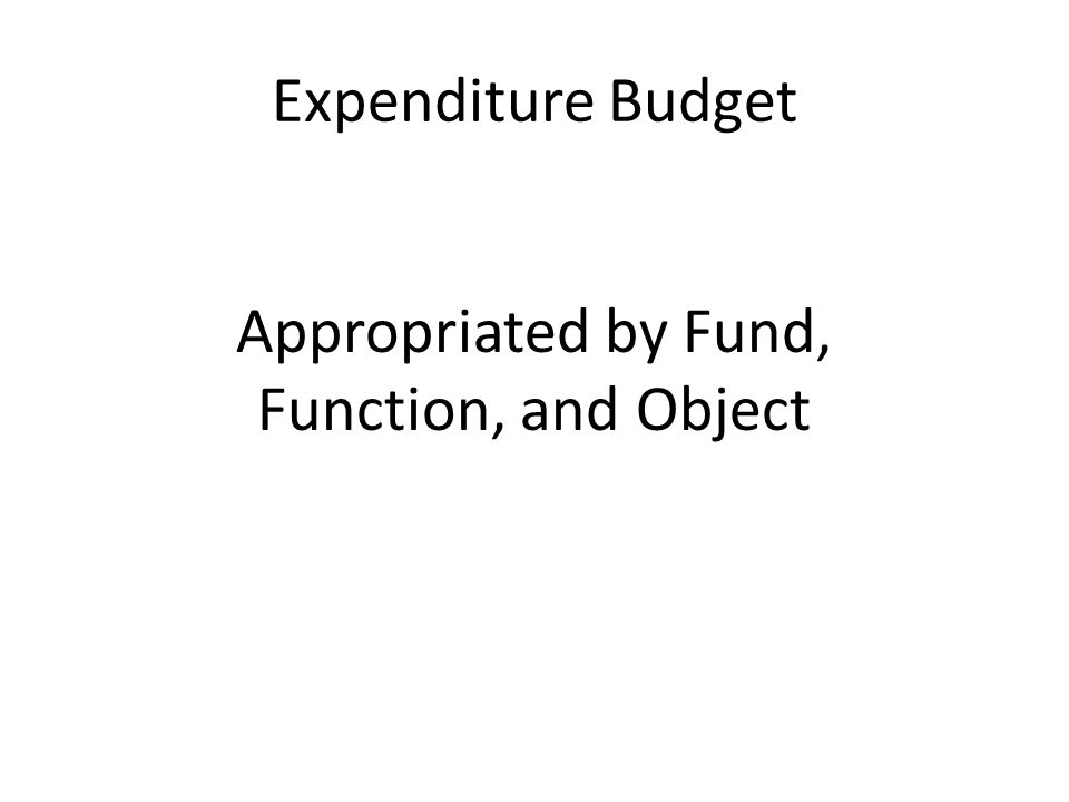 Expenditure Budget Appropriated by Fund, Function, and Object