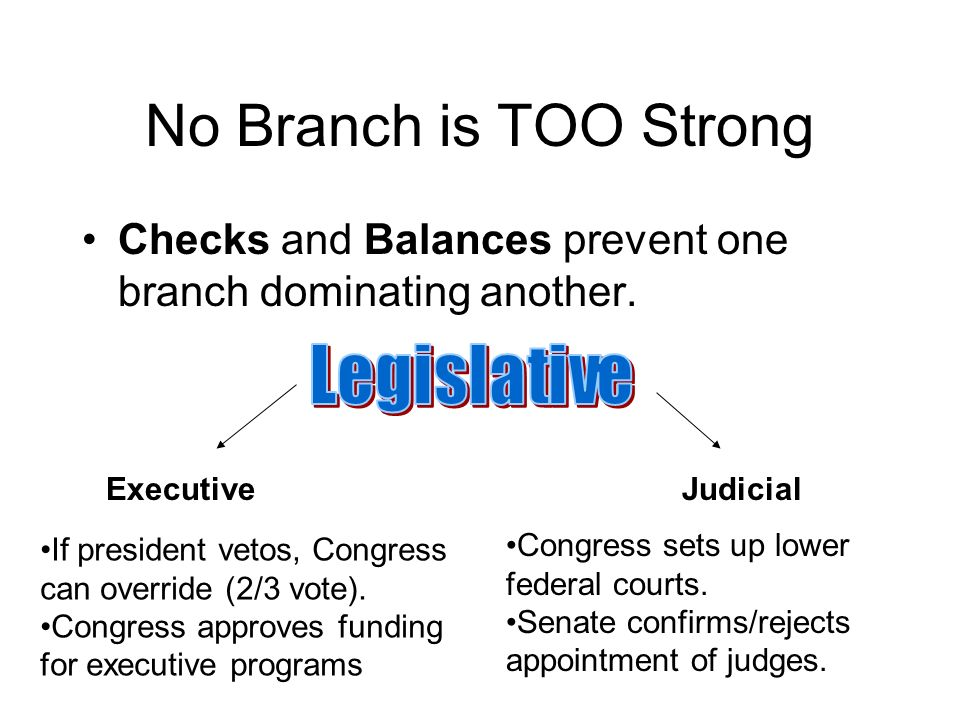 No Branch is TOO Strong Checks and Balances prevent one branch dominating another.
