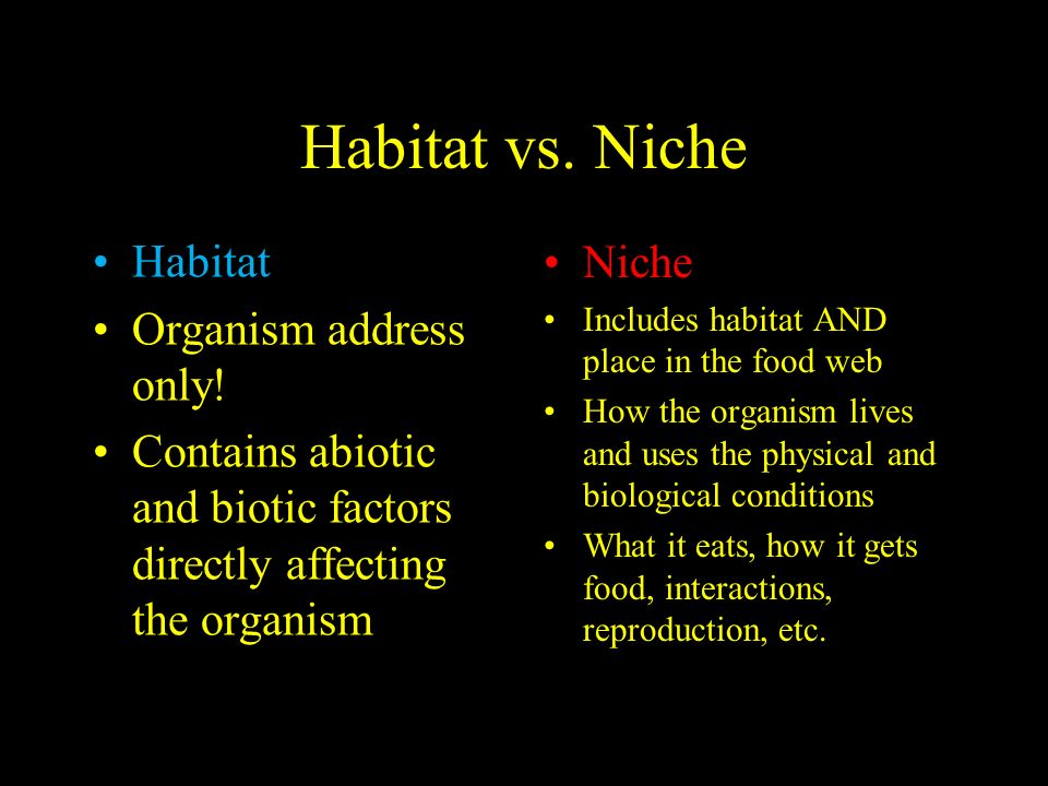 Habitat vs. Niche Habitat Organism address only.