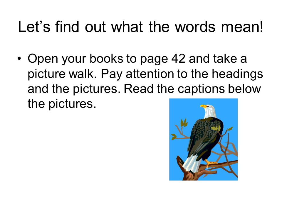 Let's find out what the words mean. Open your books to page 42 and take a picture walk.