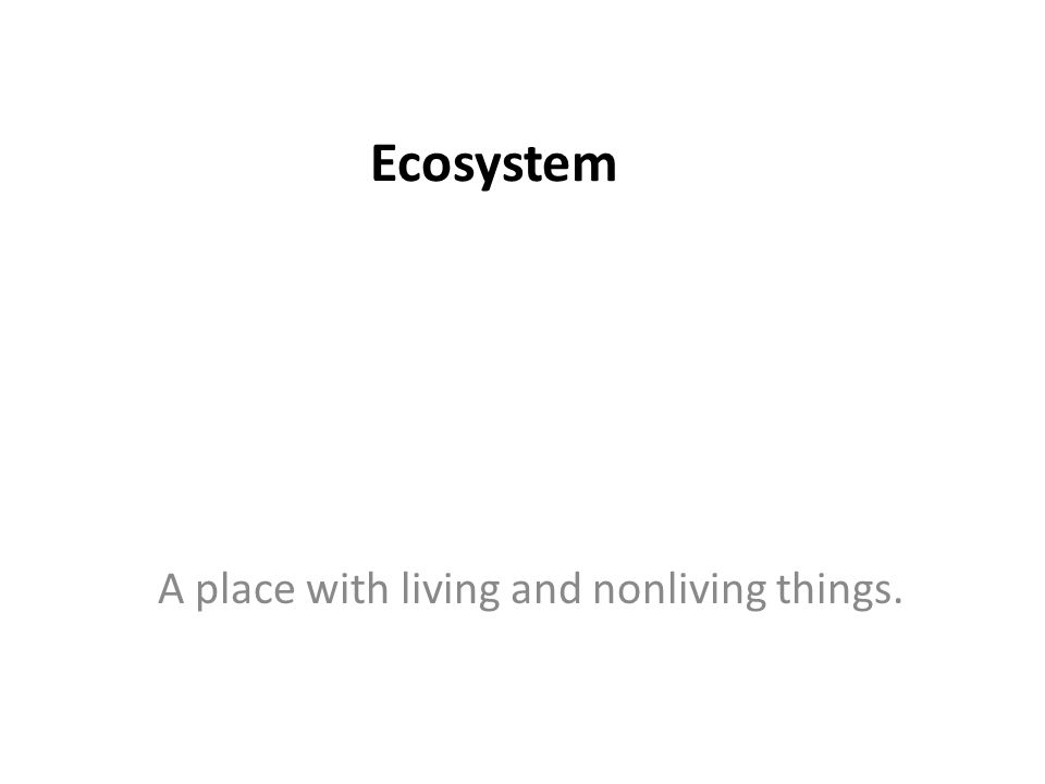 Ecosystem A place with living and nonliving things.