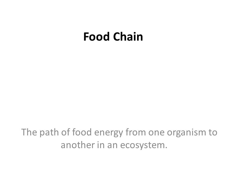 Food Chain The path of food energy from one organism to another in an ecosystem.