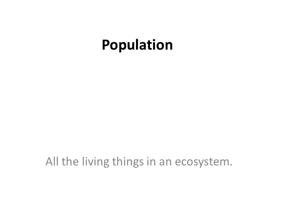 Population All the living things in an ecosystem.