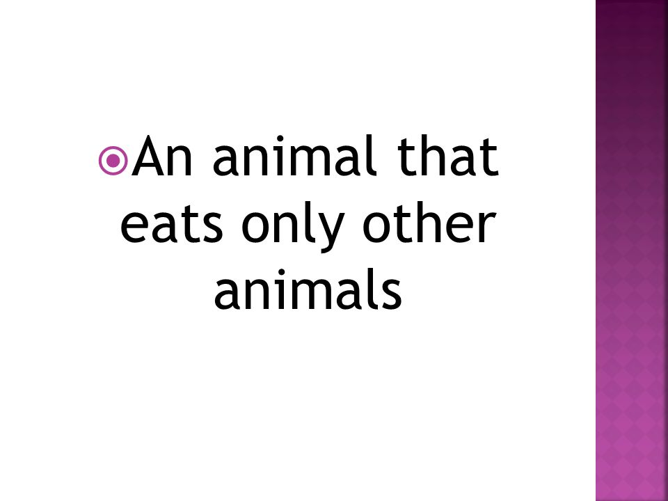  An animal that eats only other animals
