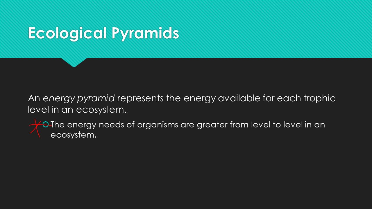 Ecological Pyramids An energy pyramid represents the energy available for each trophic level in an ecosystem.