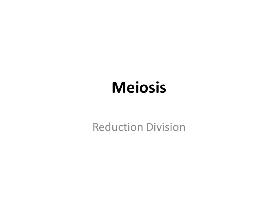 Meiosis Reduction Division