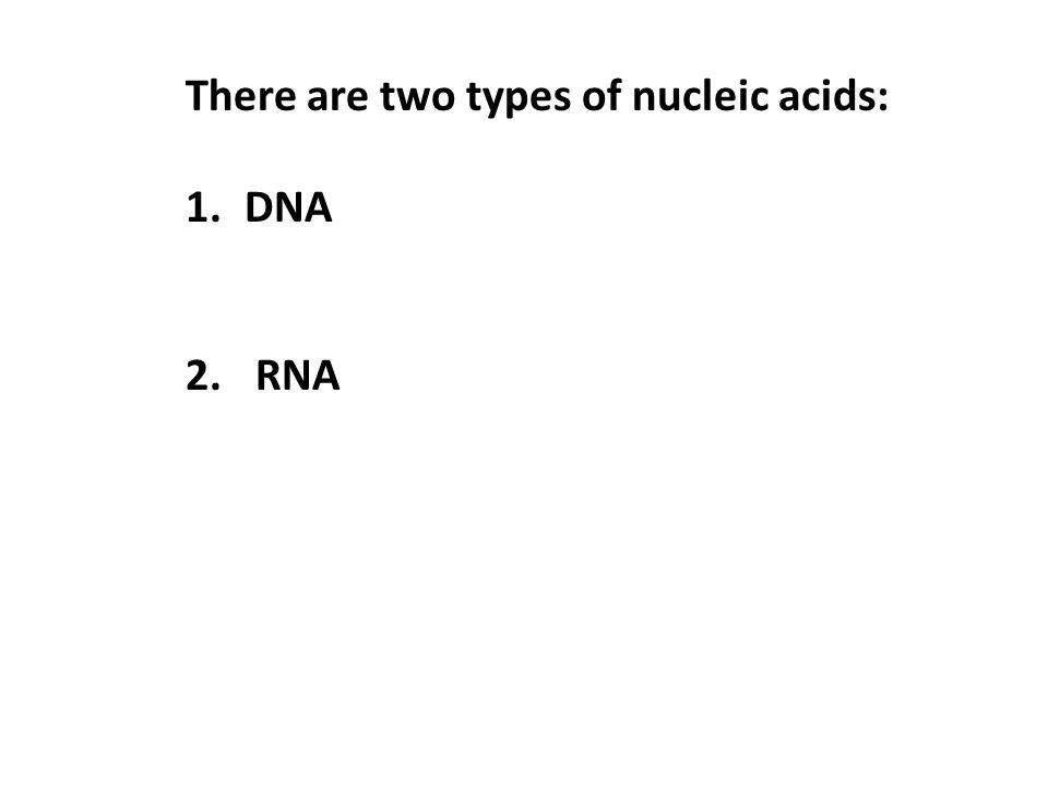 There are two types of nucleic acids: 1.DNA 2. RNA
