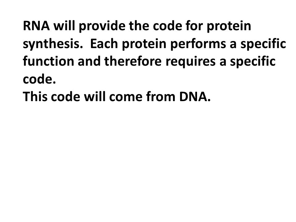 RNA will provide the code for protein synthesis.