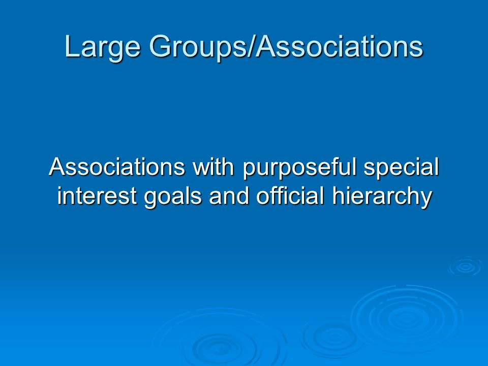 Large Groups/Associations Associations with purposeful special interest goals and official hierarchy