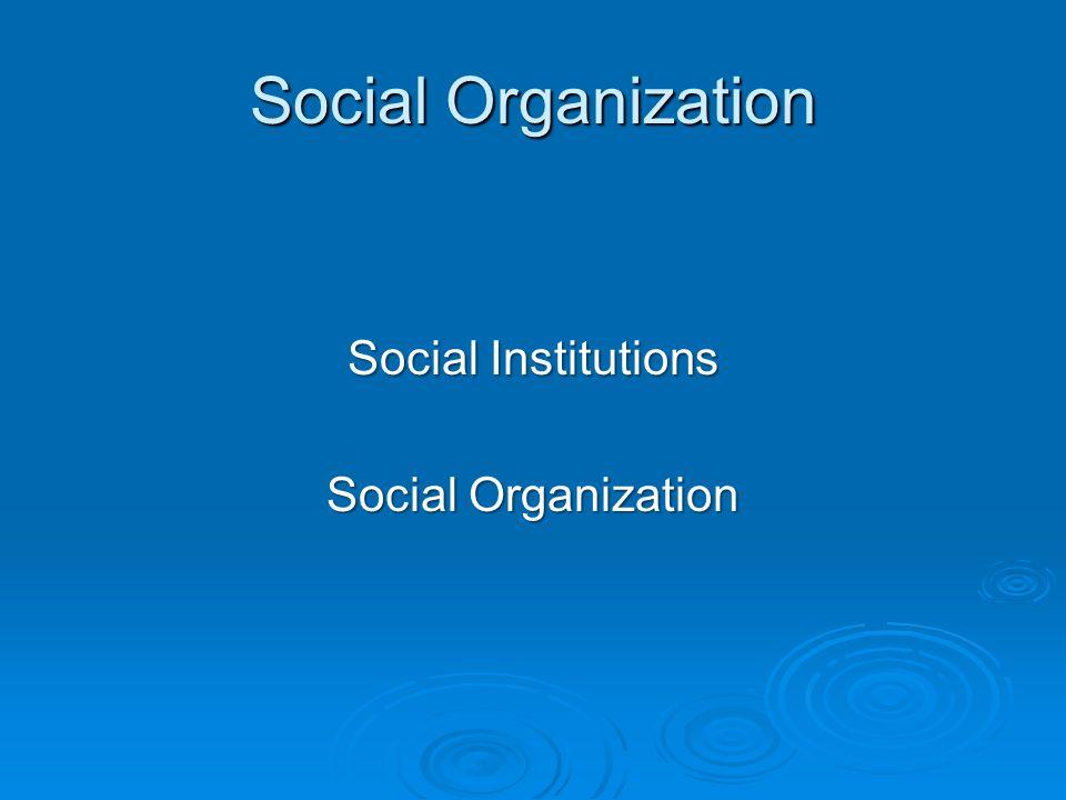 Social Organization Social Institutions Social Organization