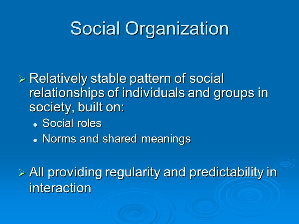 Social Organization  Relatively stable pattern of social relationships of individuals and groups in society, built on: Social roles Social roles Norms and shared meanings Norms and shared meanings  All providing regularity and predictability in interaction