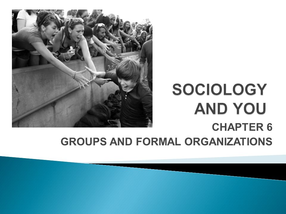 CHAPTER 6 GROUPS AND FORMAL ORGANIZATIONS