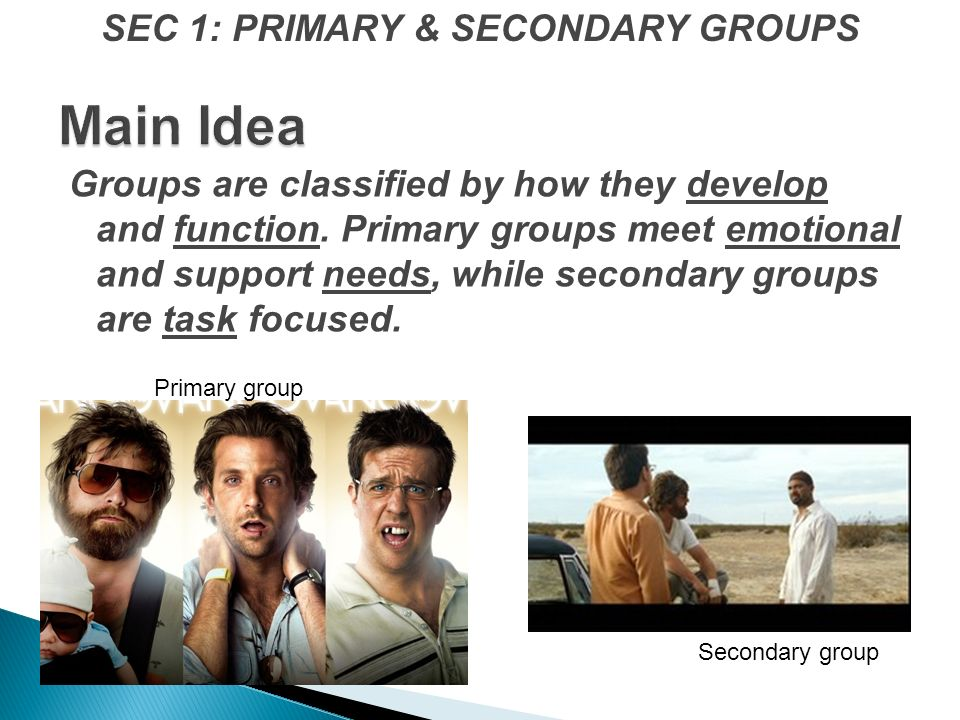 Groups are classified by how they develop and function.