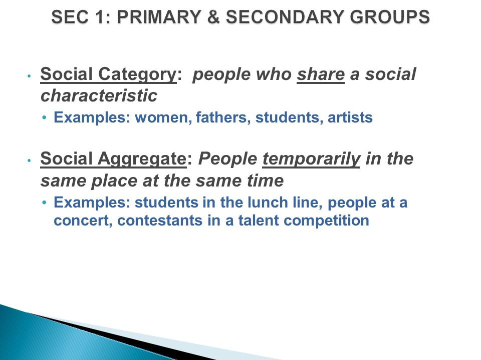 Social Category: people who share a social characteristic Examples: women, fathers, students, artists Social Aggregate: People temporarily in the same place at the same time Examples: students in the lunch line, people at a concert, contestants in a talent competition