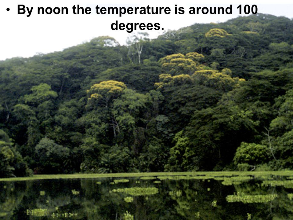 By noon the temperature is around 100 degrees.