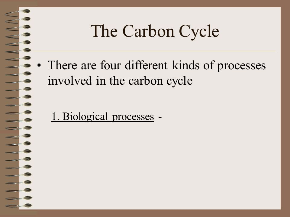 The Carbon Cycle There are four different kinds of processes involved in the carbon cycle 1.