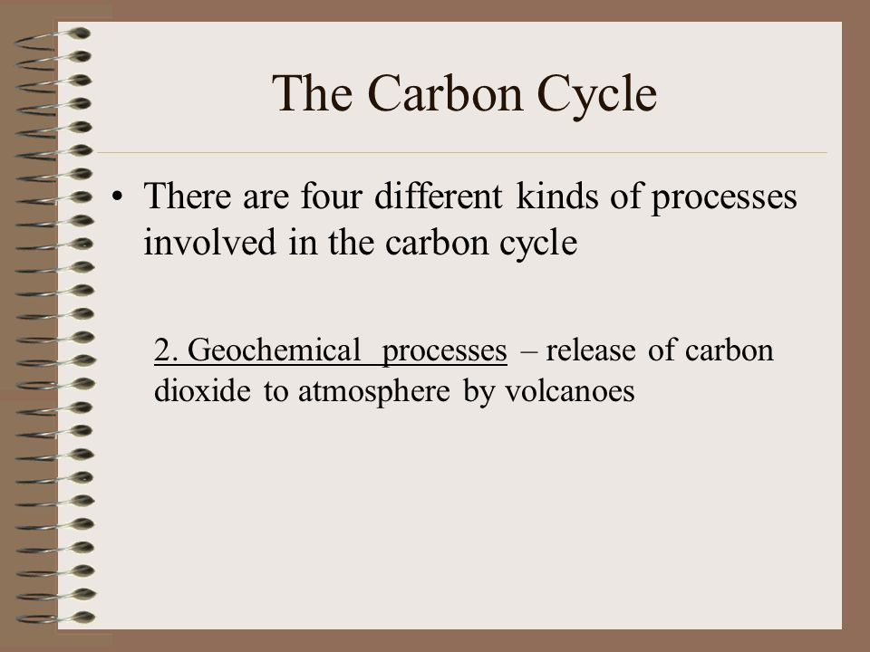 The Carbon Cycle There are four different kinds of processes involved in the carbon cycle 2.
