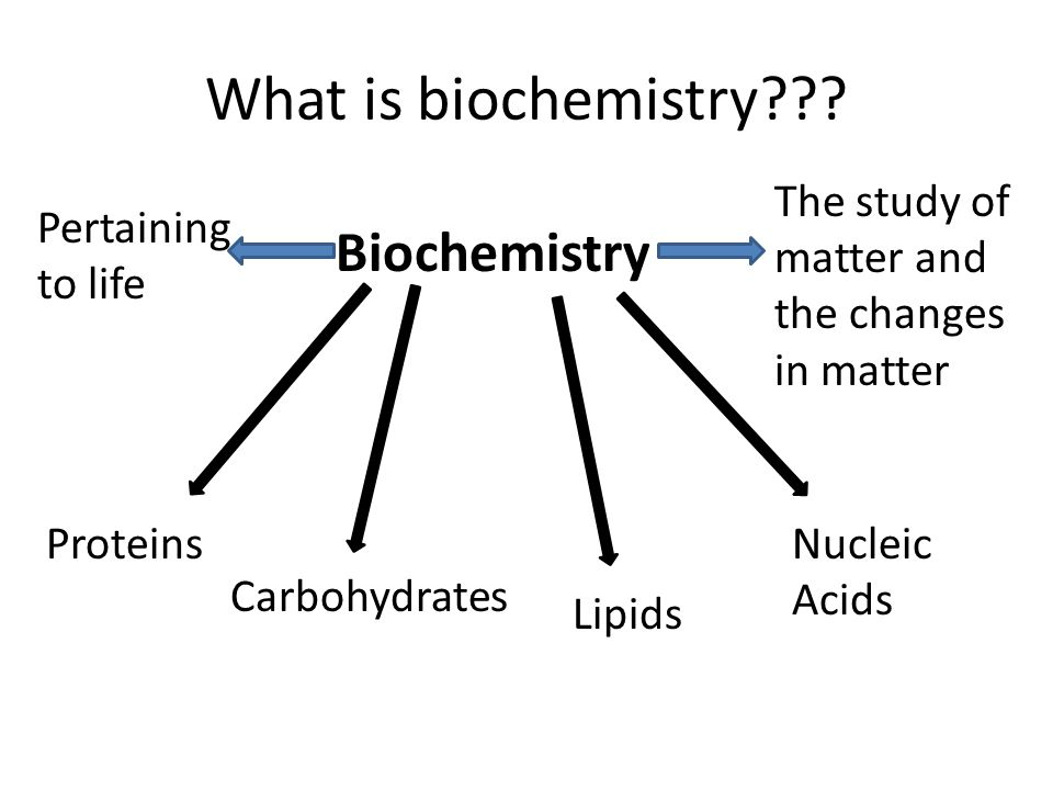 biological molecules. what is biochemistry??? biochemistry the, Cephalic Vein