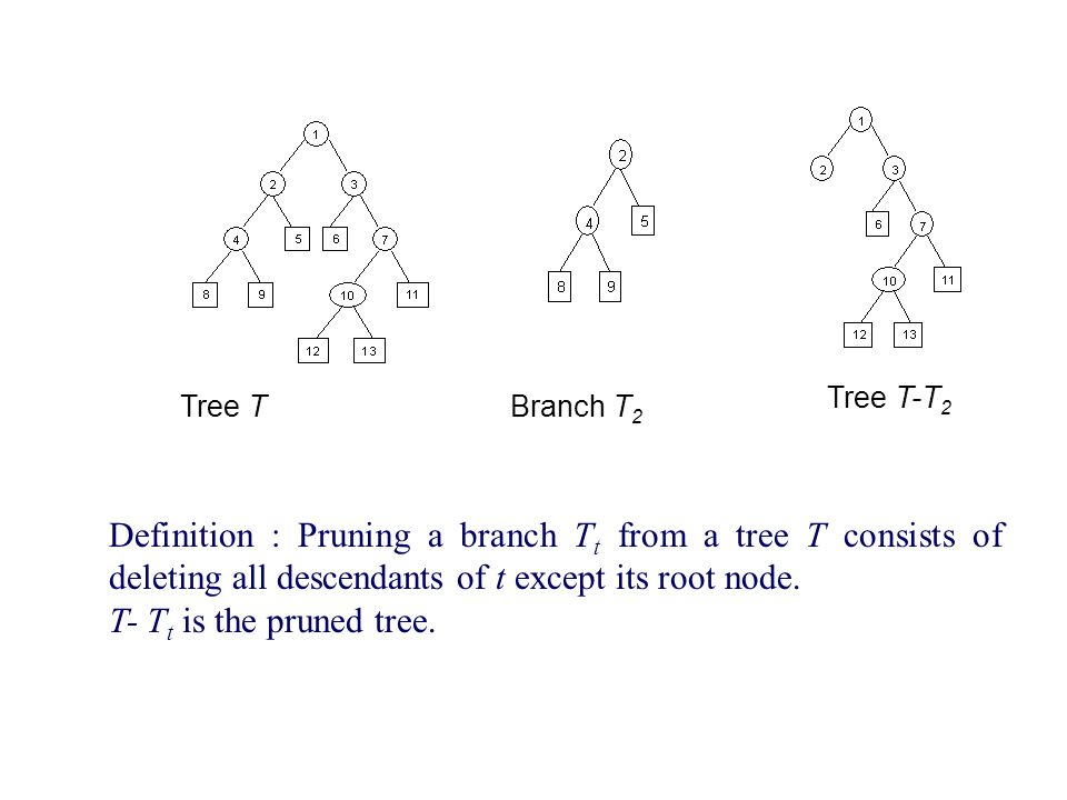 Tree TBranch T 2 Tree T T 2 Definition : Pruning A Branch T T From A