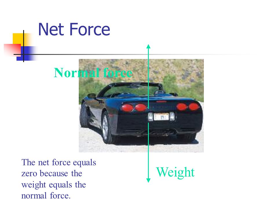 Net Force Weight Normal force The net force equals zero because the weight equals the normal force.