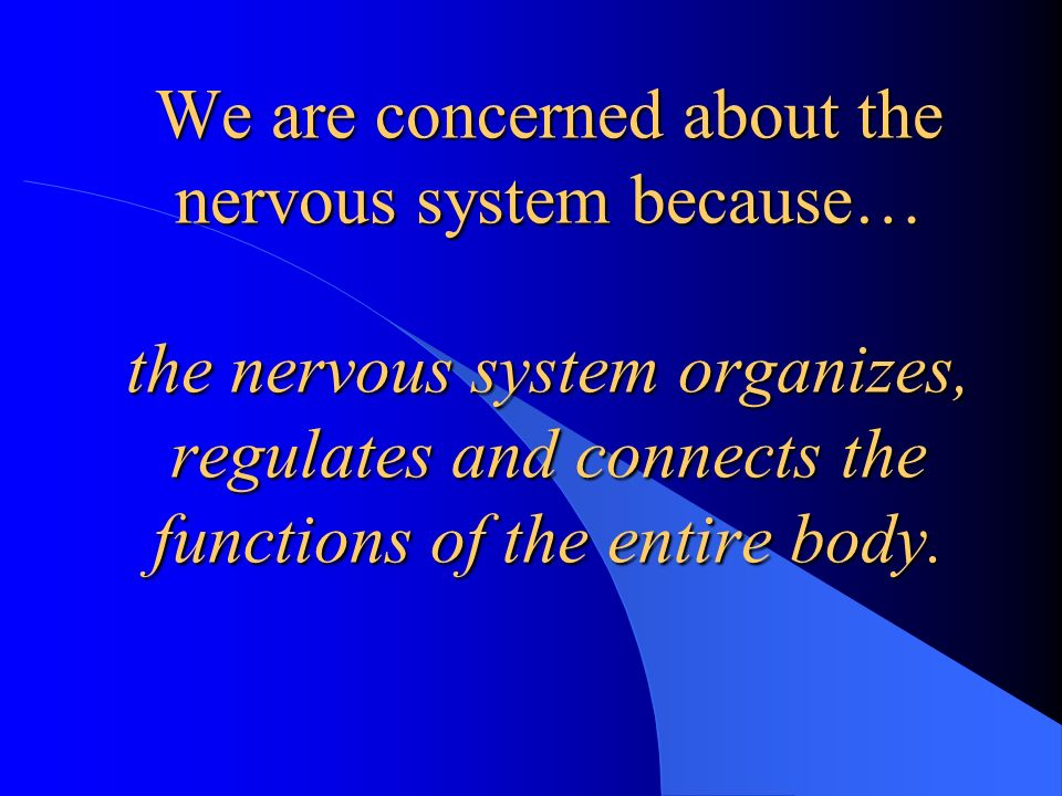 How does chiropractic care maximize function….
