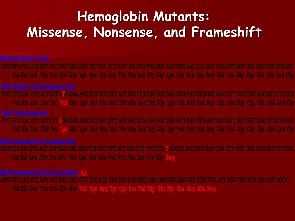Hemoglobin Mutants: Missense, Nonsense, and Frameshift
