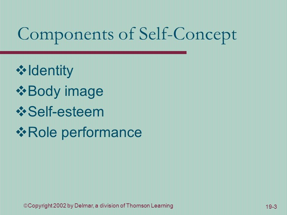  Copyright 2002 by Delmar, a division of Thomson Learning 19-3 Components of Self-Concept  Identity  Body image  Self-esteem  Role performance