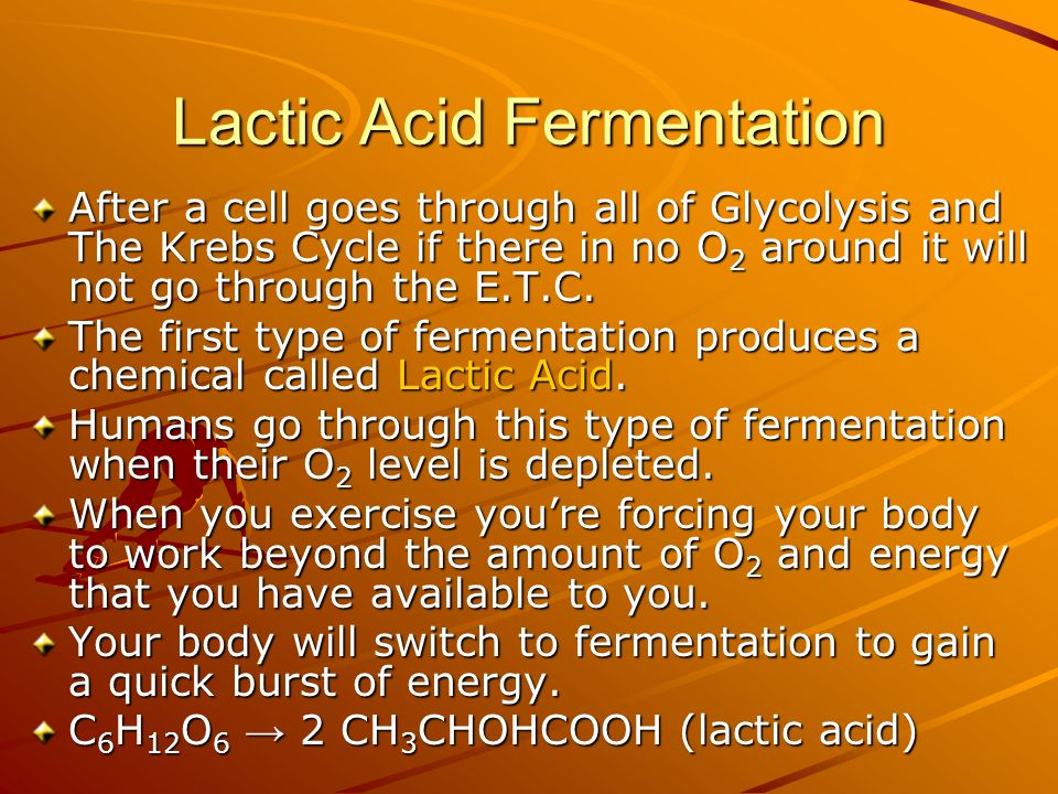 Lactic Acid Fermentation After a cell goes through all of Glycolysis and The Krebs Cycle if there in no O 2 around it will not go through the E.T.C.