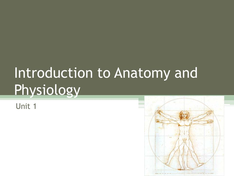Introduction to Anatomy and Physiology Unit 1. So what will we study ...