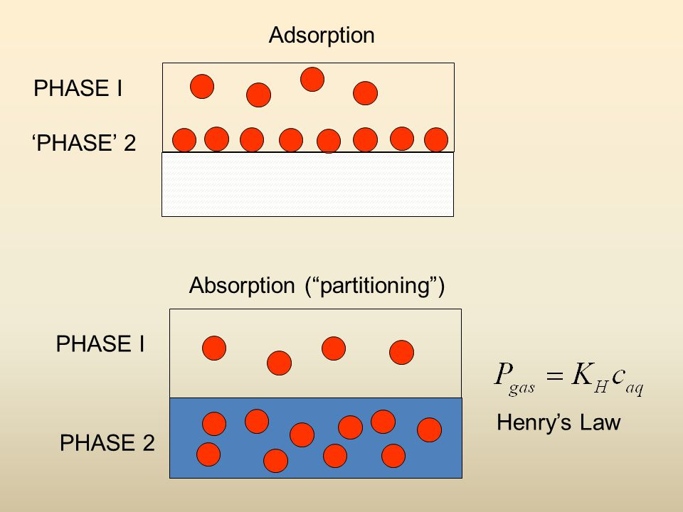 Adsorption Absorption ( partitioning ) PHASE I PHASE 2 PHASE I 'PHASE' 2 Henry's Law