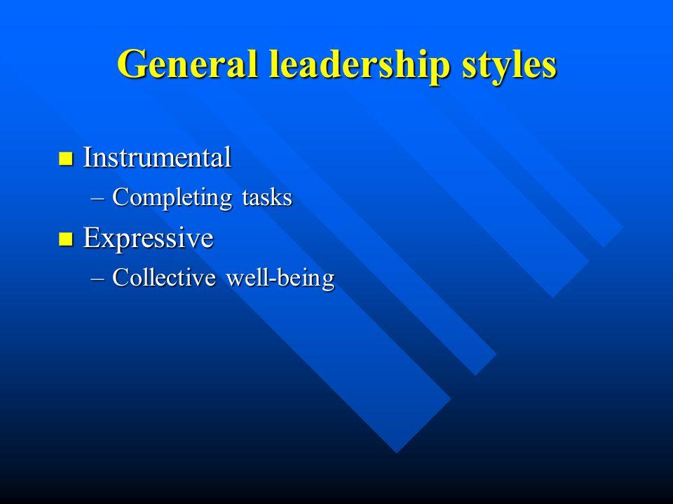 General leadership styles n Instrumental –Completing tasks n Expressive –Collective well-being