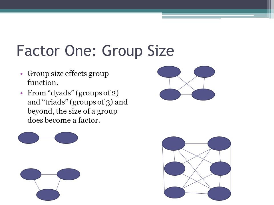 Factor One: Group Size Group size effects group function.