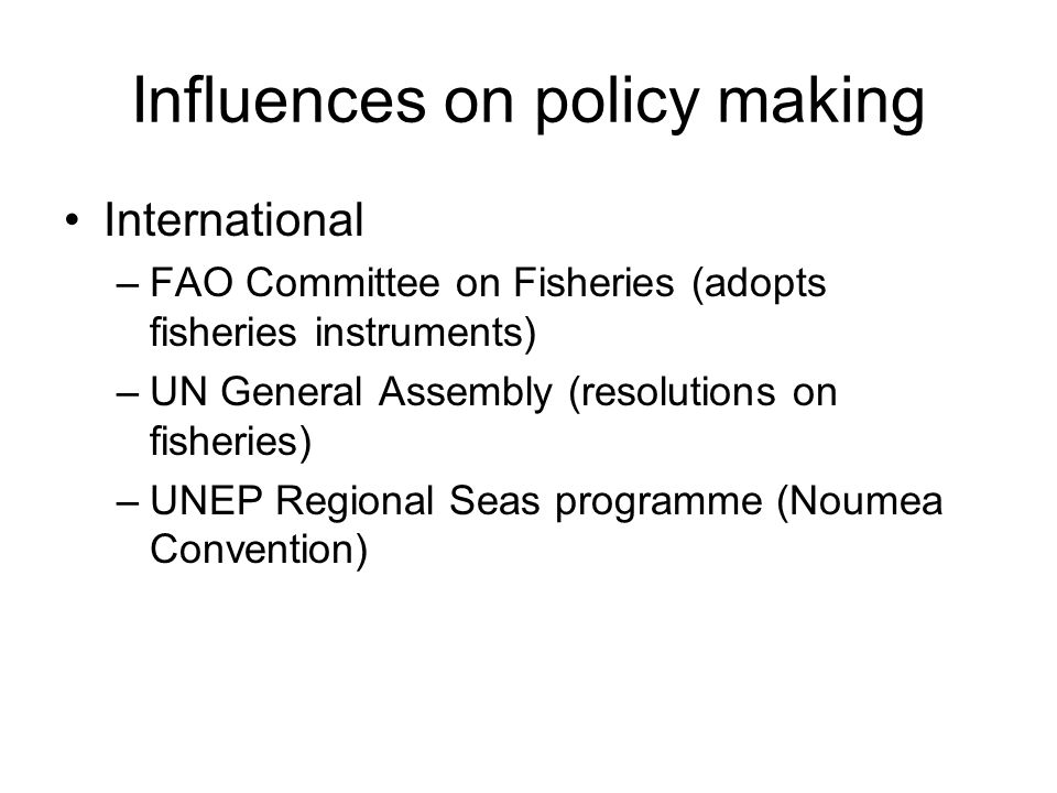 Influences on policy making International –FAO Committee on Fisheries (adopts fisheries instruments) –UN General Assembly (resolutions on fisheries) –UNEP Regional Seas programme (Noumea Convention)