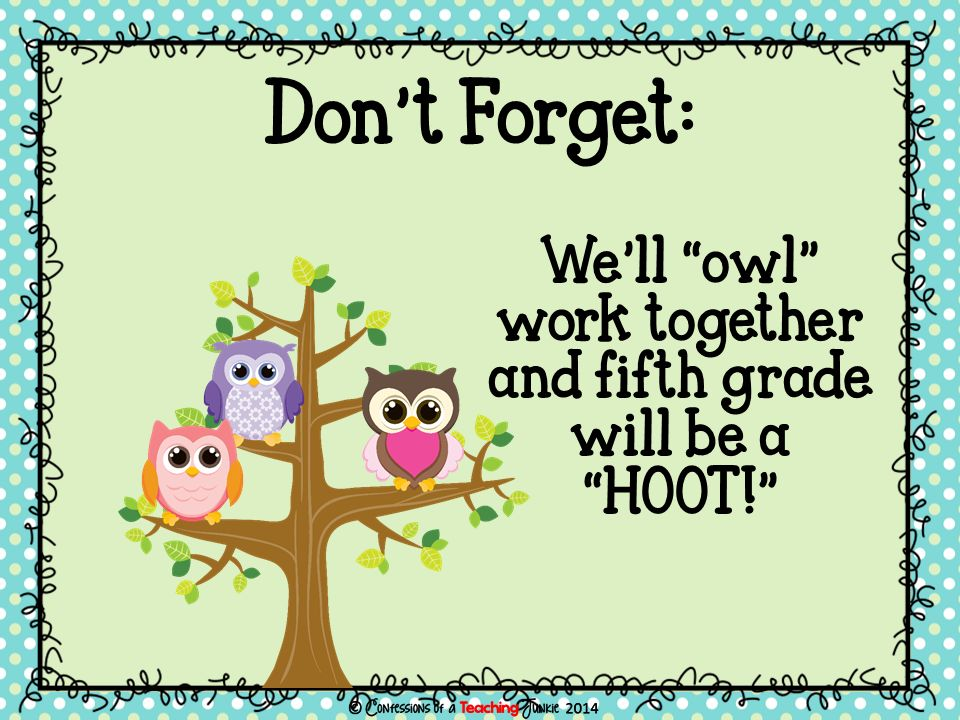 We'll owl work together and fifth grade will be a HOOT! Don't Forget: