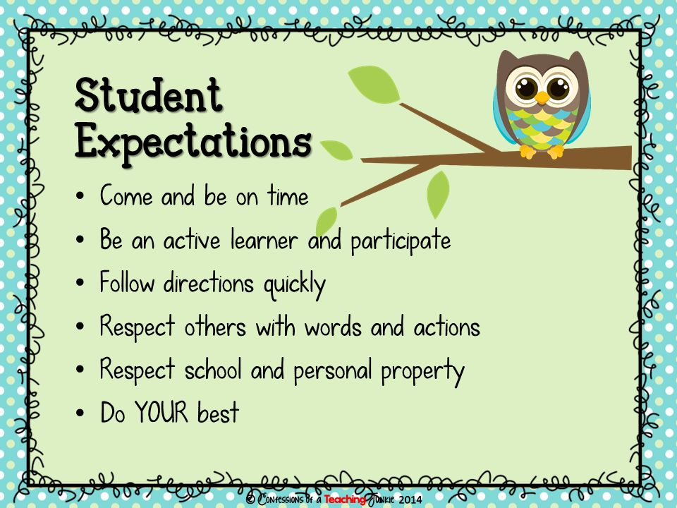 Student Expectations Come and be on time Be an active learner and participate Follow directions quickly Respect others with words and actions Respect school and personal property Do YOUR best