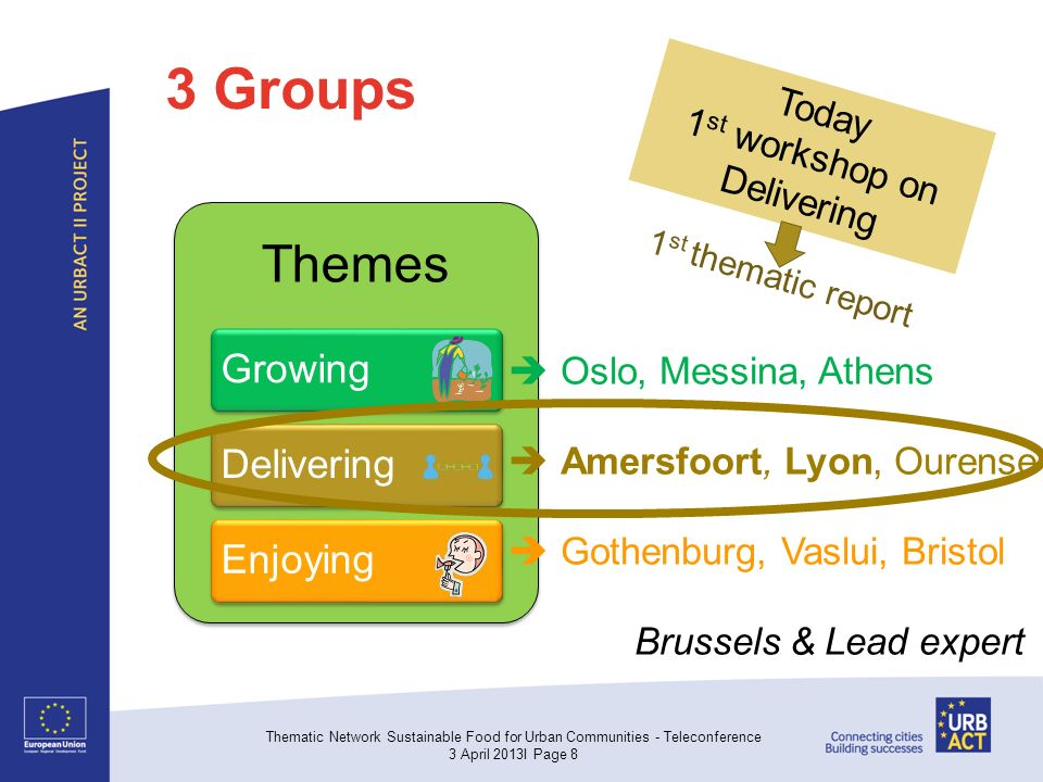 3 Groups Themes GrowingDeliveringEnjoying Thematic Network Sustainable Food for Urban Communities - Teleconference 3 April 2013I Page 8  Oslo, Messina, Athens  Amersfoort, Lyon, Ourense  Gothenburg, Vaslui, Bristol Brussels & Lead expert Today 1 st workshop on Delivering 1 st thematic report