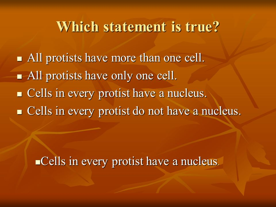 Which statement is true. All protists have more than one cell.