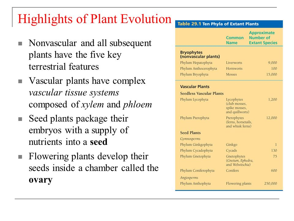 an analysis of the topic of the plant evolving Recent advances in plant a survey of best practices for rna-seq data analysis thought-provoking opinions and other content commissioned by the genome biology.