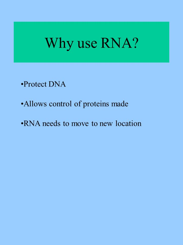 Why use RNA Protect DNA Allows control of proteins made RNA needs to move to new location